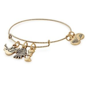 Game of Thrones Alex and Ani bracelet.
